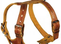 Фирменная кожаная шлейка