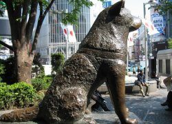 Памятник Хатико на станции Сибуя