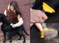 Вычёсывание собак фурминатором