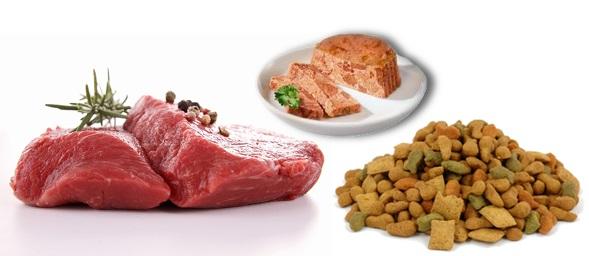 Мясо и два вида корма