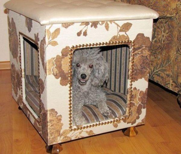 Пудель в собачьем домике