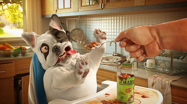 Собака вредничает во время кормления
