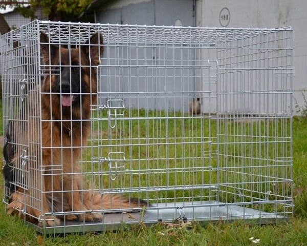 Большая клетка для собаки