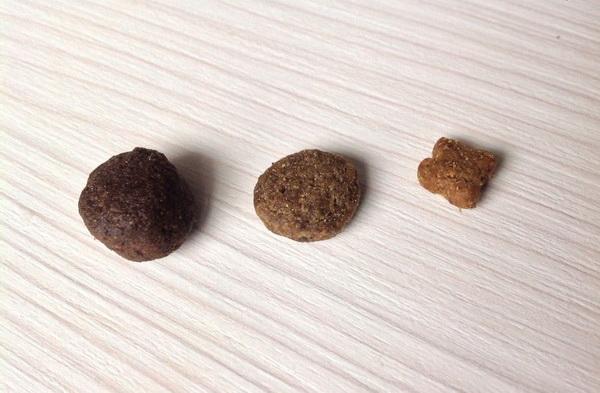 Grandorf (слева) и другие корма