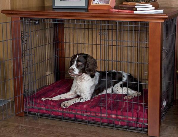 Пес сидит в аккуратной клетке