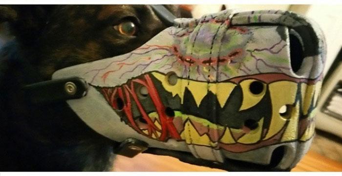 Необычный намордник для собак