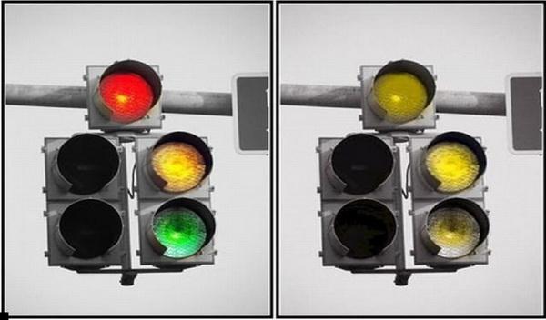 Светофор глазами пса (справа)
