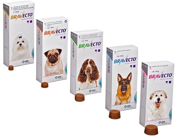 Таблетки Бравекто для домашних собак