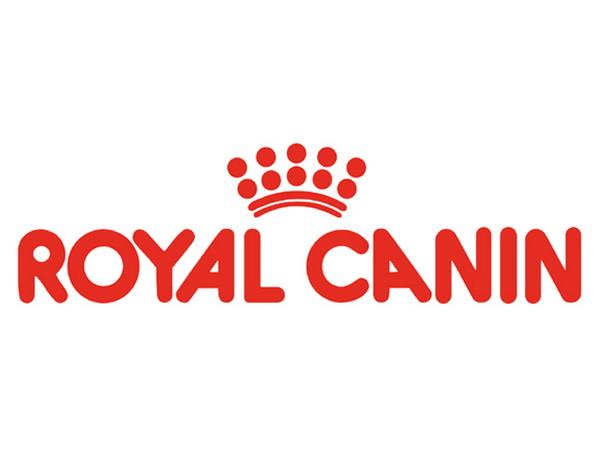 Логотип компании крупным планом