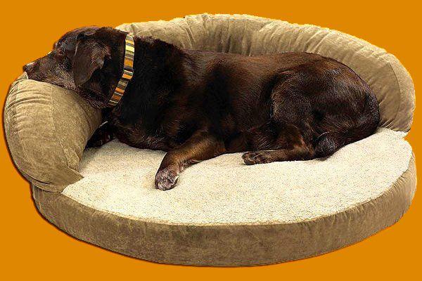 Собака лежит на коричневой лежанке