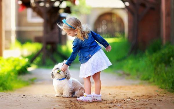 Девочка гладит собачку