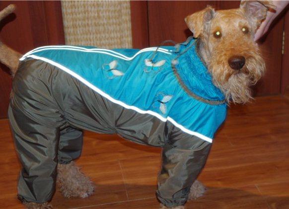 Осенне-весенний комбинезон для крупной собаки