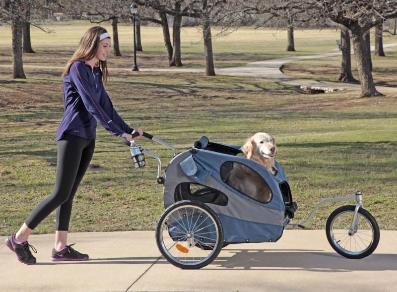 Прогулочный вариант коляски для собаки