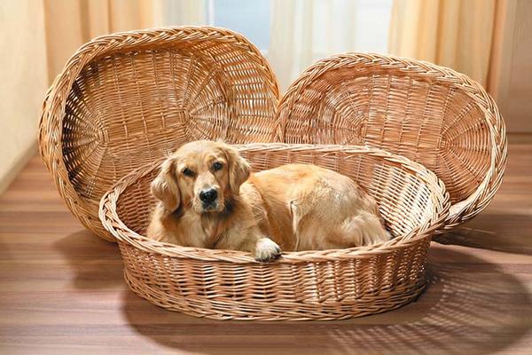 Корзина для собаки