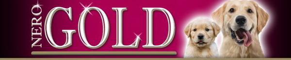 Логотип Неро Голд