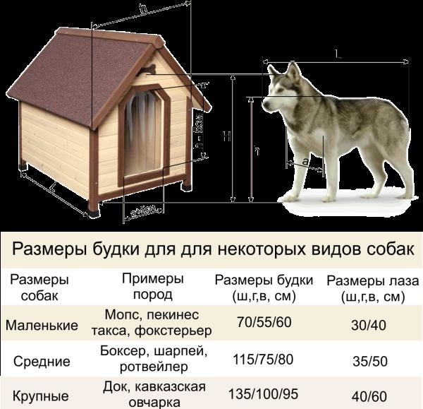 Размеры будки в соответствии с габаритами собаки