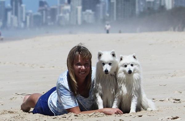 Девушка и два белых пса