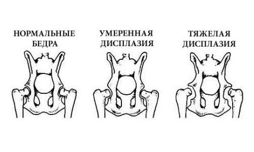 Санатории белоруссии по лечению кожных заболеваний
