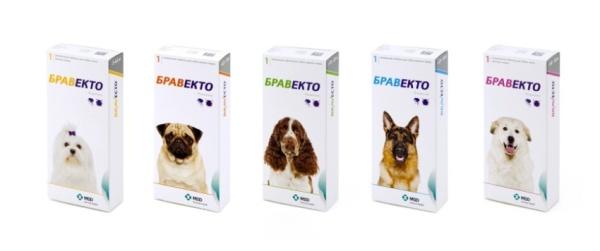 Таблетки для выведения собачьих паразитов