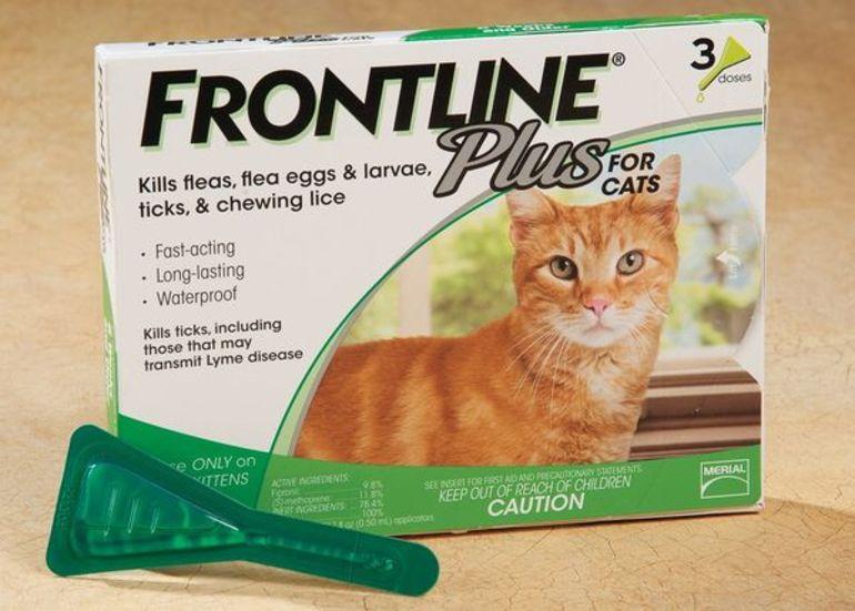 фронтлайн для кошек показания