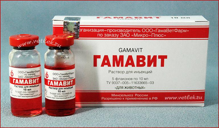 Доза лекарства Гамавит