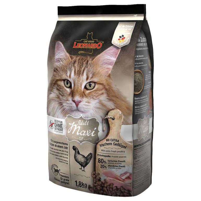 Как выбирать корма для кошек