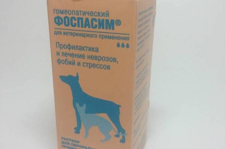 Препарат для лечения простатита у собак уколы для профилактики хронического простатита