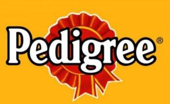 Описание корма для собак Pedigree: дозировка, состав и отзывы ветеринаров