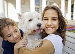 Фото 3. Собака со своими хозяевами