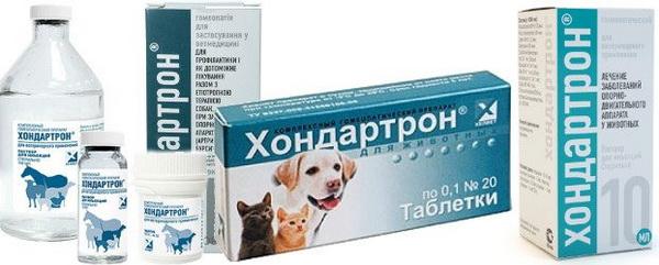 Хондартрон для собак: состав, показания и инструкция по применению