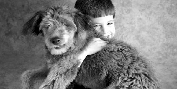 Интересные факты о породах: самые верные, добрые, страшные и популярные из собак