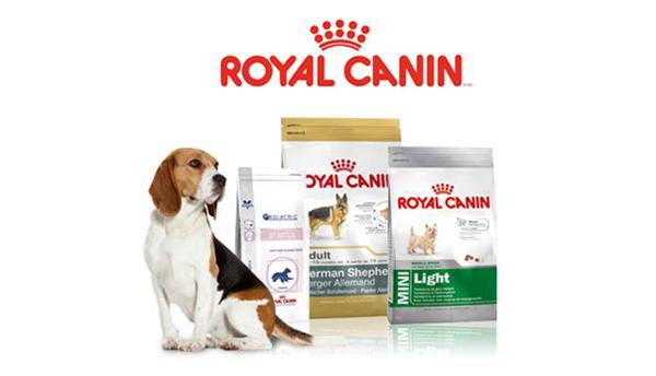 Состав сухих кормов для собак royal canin